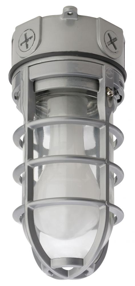 Light Concepts (Lithonia) OVT 150I 120 - One Light Gray    Outdoor Flush Mount